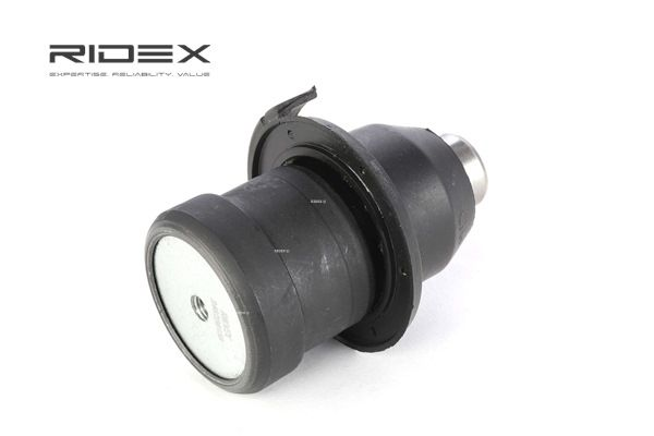 buy and replace Ball Joint RIDEX 2462S0158