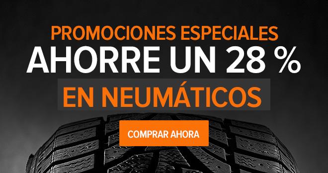 Promociones especiales! Ahorre un 28 % en Neumáticos - Comprar ahora