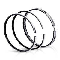 Brand automobile Piston rings huge selection online