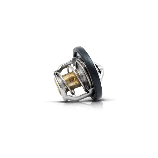 Thermostat for VW
