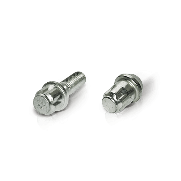 Wheel bolt and wheel nuts