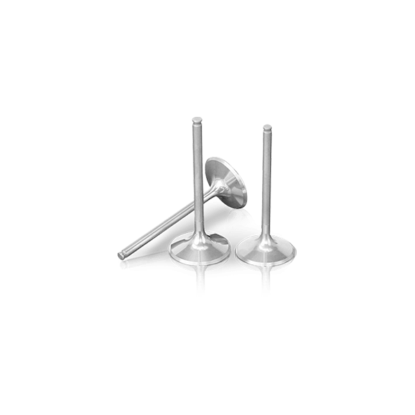 Exhaust valve Top offer