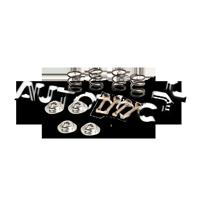 Zubehörsatz, Bremsbacken B160136 Clio III Schrägheck (BR0/1, CR0/1) 1.5 dCi 86 PS Premium Autoteile-Angebot
