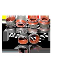Ventilschaftdichtung P76824-00 Clio II Schrägheck (BB, CB) 1.2 16V 75 PS Premium Autoteile-Angebot