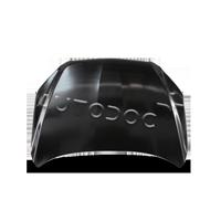 Motorhaube und Einzelteile 95 41 03 Golf V Schrägheck (1K1) 2.0 TDI 16V 4motion 140 PS Premium Autoteile-Angebot