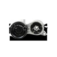 Spannarm, Keilrippenriemen 4318201109 — aktuelle Top OE 8200 275 844 Ersatzteile-Angebote