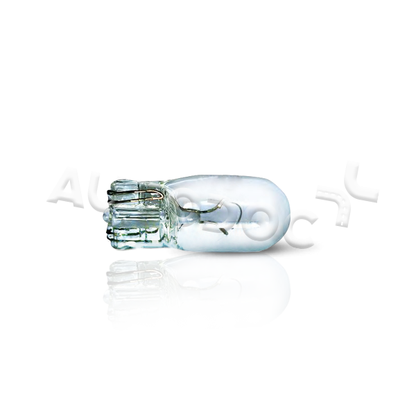 Original NISSAN Kennzeichenleuchten Glühlampe 004069100000