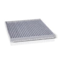 LKW Innenraumluftfilter für GINAF Nutzfahrzeuge in OE-Qualität