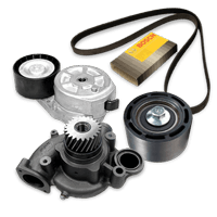 Multi-V-rem / -sæt af original kvalitet til MAN lastbiler