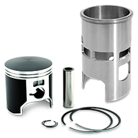 Cylinders/ Pistons for SUZUKI motorcycles
