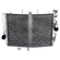Motorbike components: Radiator /Parts for HONDA ANF