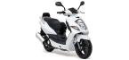 Motociklų komponentai: stabdžių įdėklas/ trinkelė, skirti DAELIM OTELLO