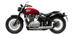 Motorbike components: Air Filter for TRIUMPH SPEEDMASTER